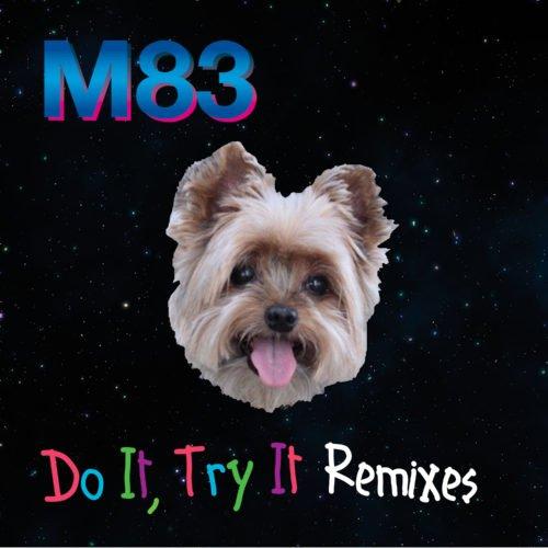 Do It, Try It Remixes